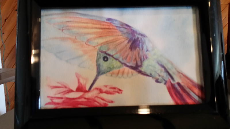 Hummingbird painting - Chris